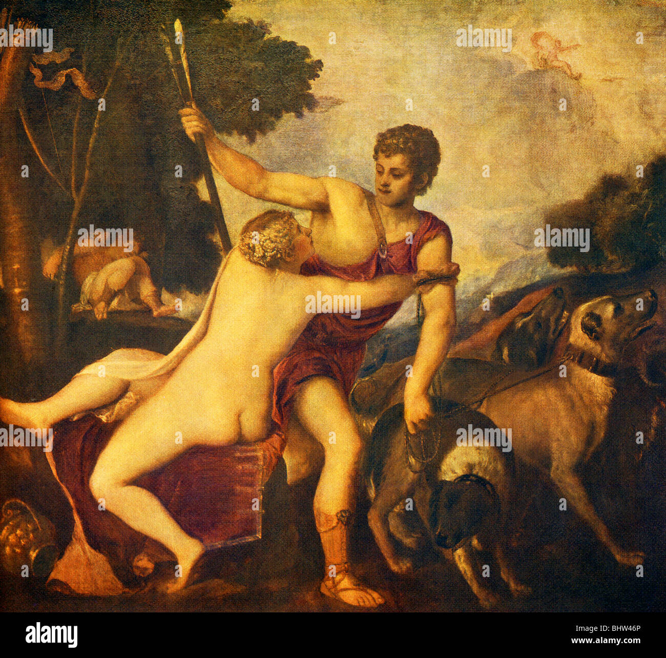 In Roman mythology, Venus was pricked by son Cupid's arrow and fell in love with Adonis, whom she warned not - Stock Image