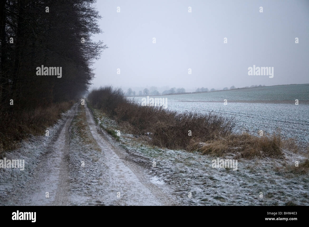 Winter im Deister Winter in Germany - Stock Image