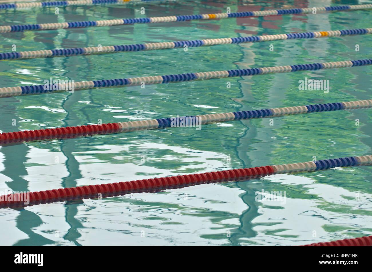 Swimming Gala Stock Photos Amp Swimming Gala Stock Images