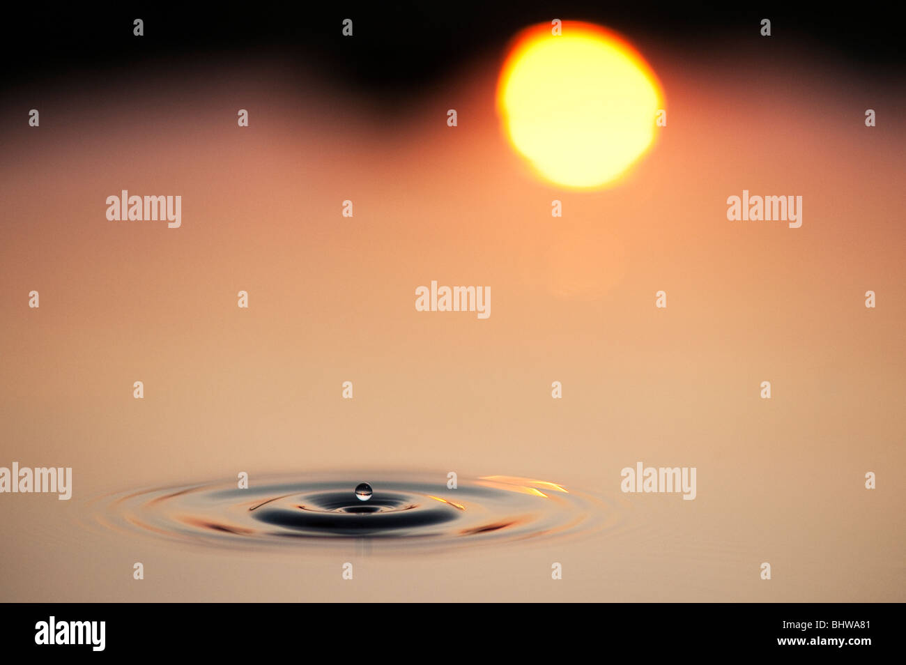Water drops and ripples in a pool with reflected sunrise background. India - Stock Image