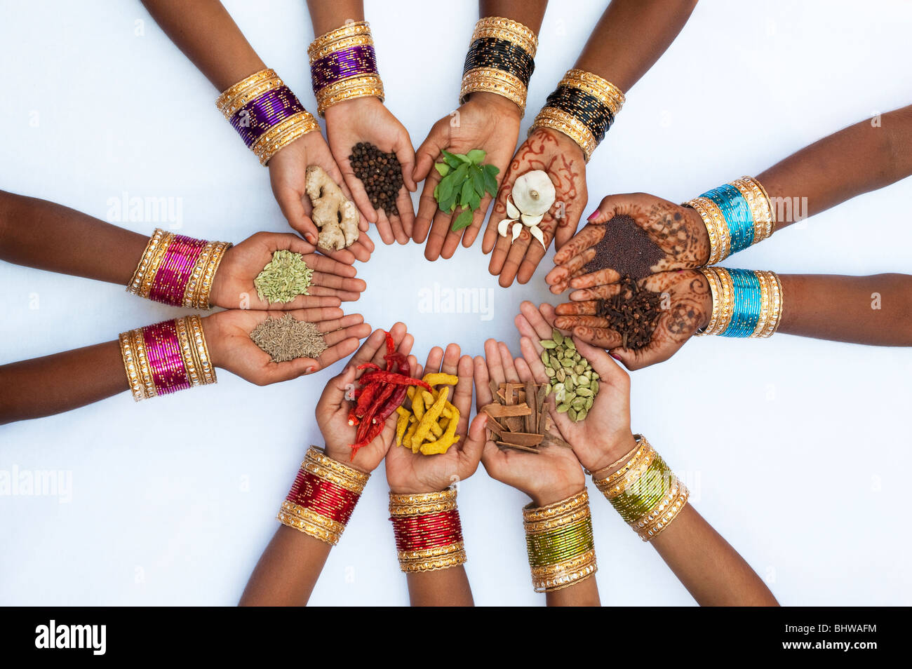 Indian children hands holding various indian cooking spices on white background - Stock Image