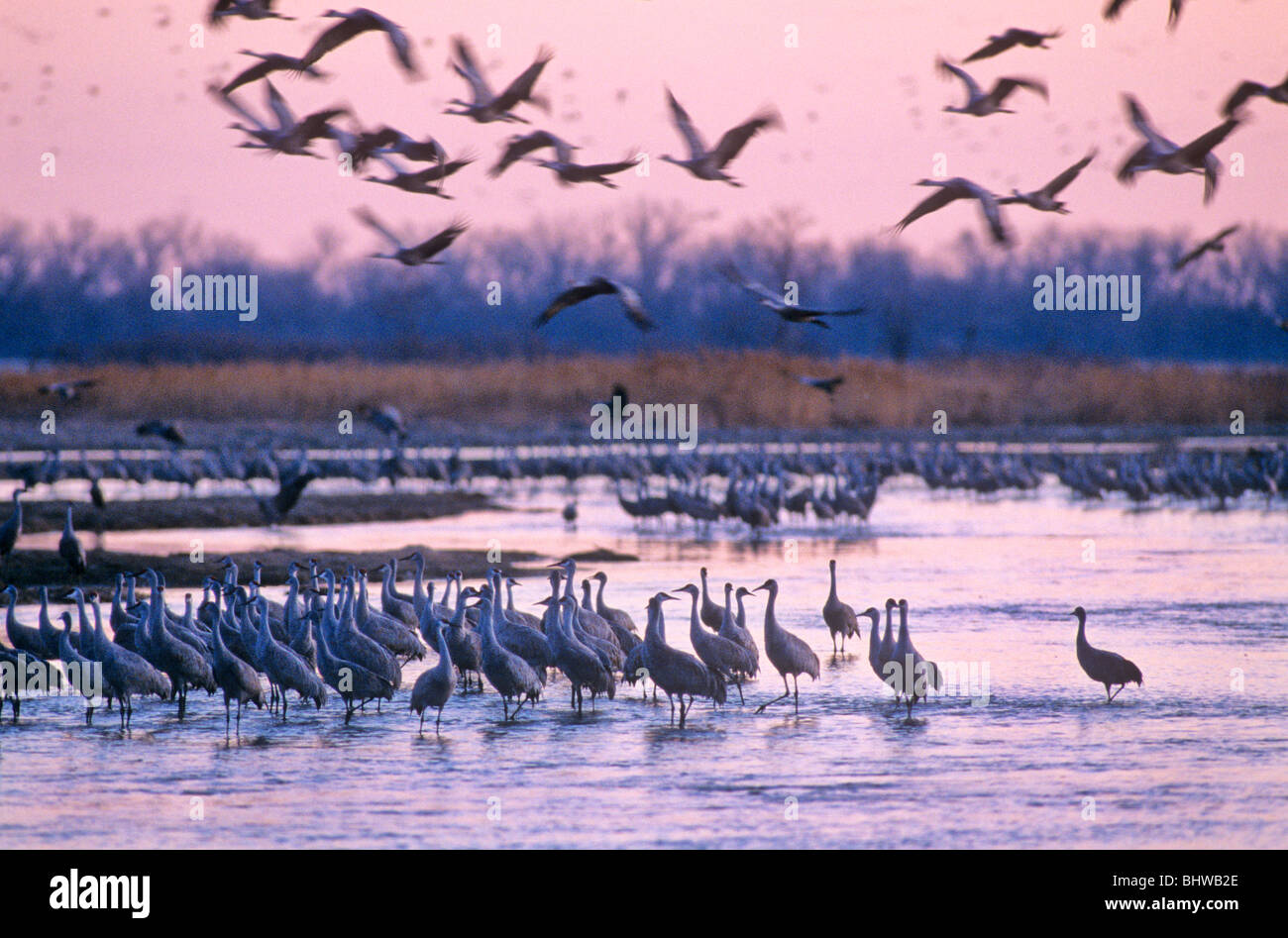 Nebraska Usa Stock Photos & Nebraska Usa Stock Images - Alamy