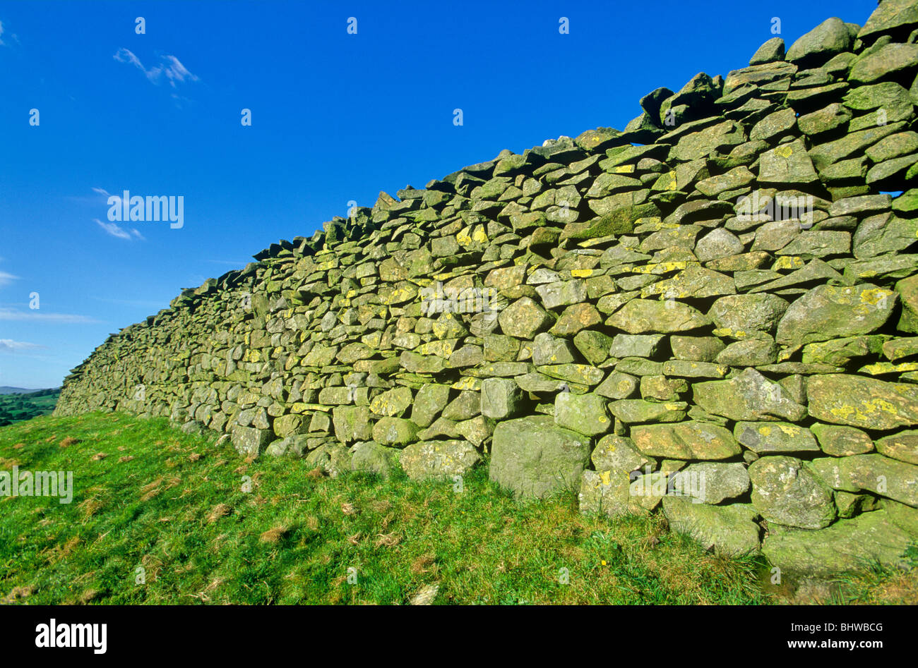 Dry stone wall in the English countryside, Yorkshire Dales National Park, Cumbria, England - Stock Image