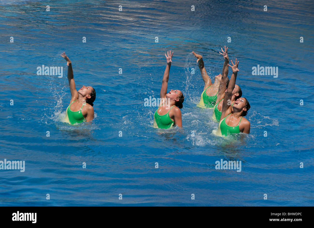Synchronized swimmers - Stock Image