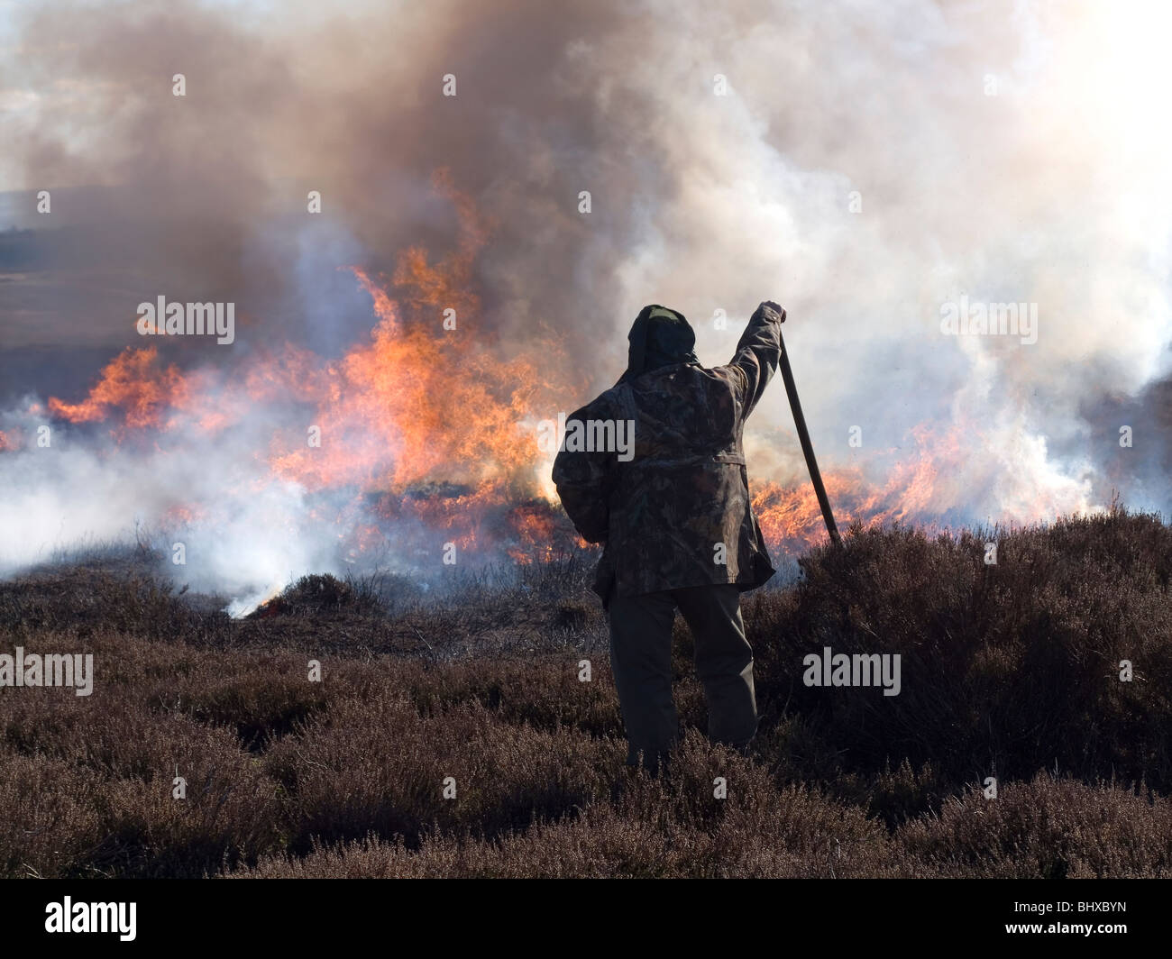 Controlled heather burning on the North Yorkshire Moors to prevent it growing long and lank which reduces its nutrition - Stock Image