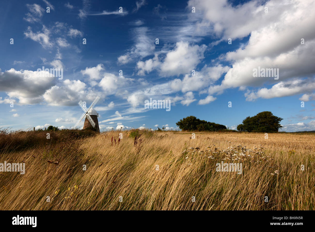 Halnaker windmill standing high up on a hilltop South Downs National Park - Stock Image
