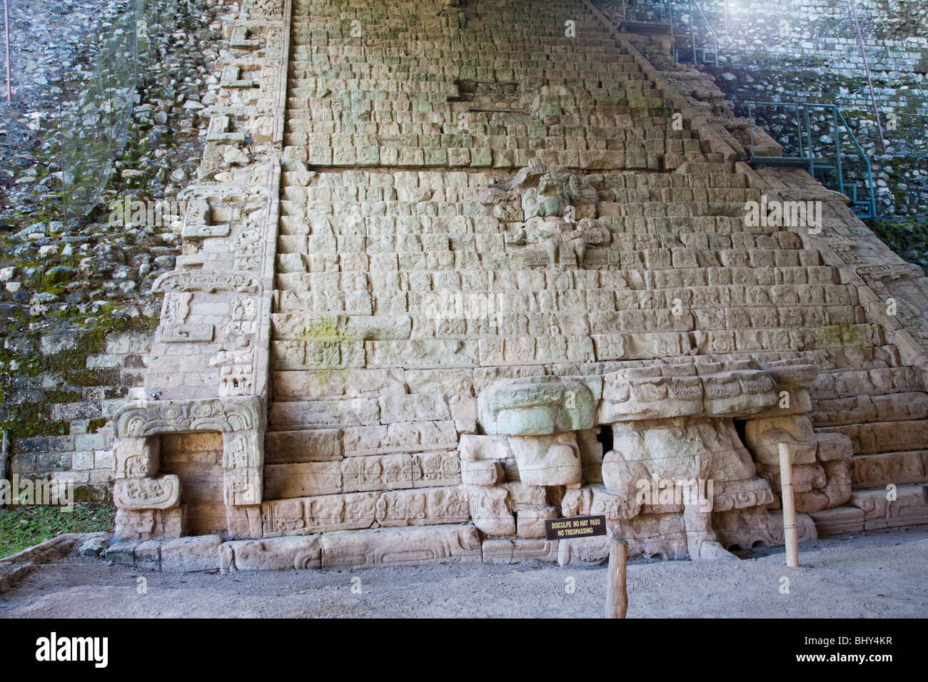 Escalinata Jeroglifica, Hieroglyphic Stairway, Copan Ruinas, Honduras - Stock Image