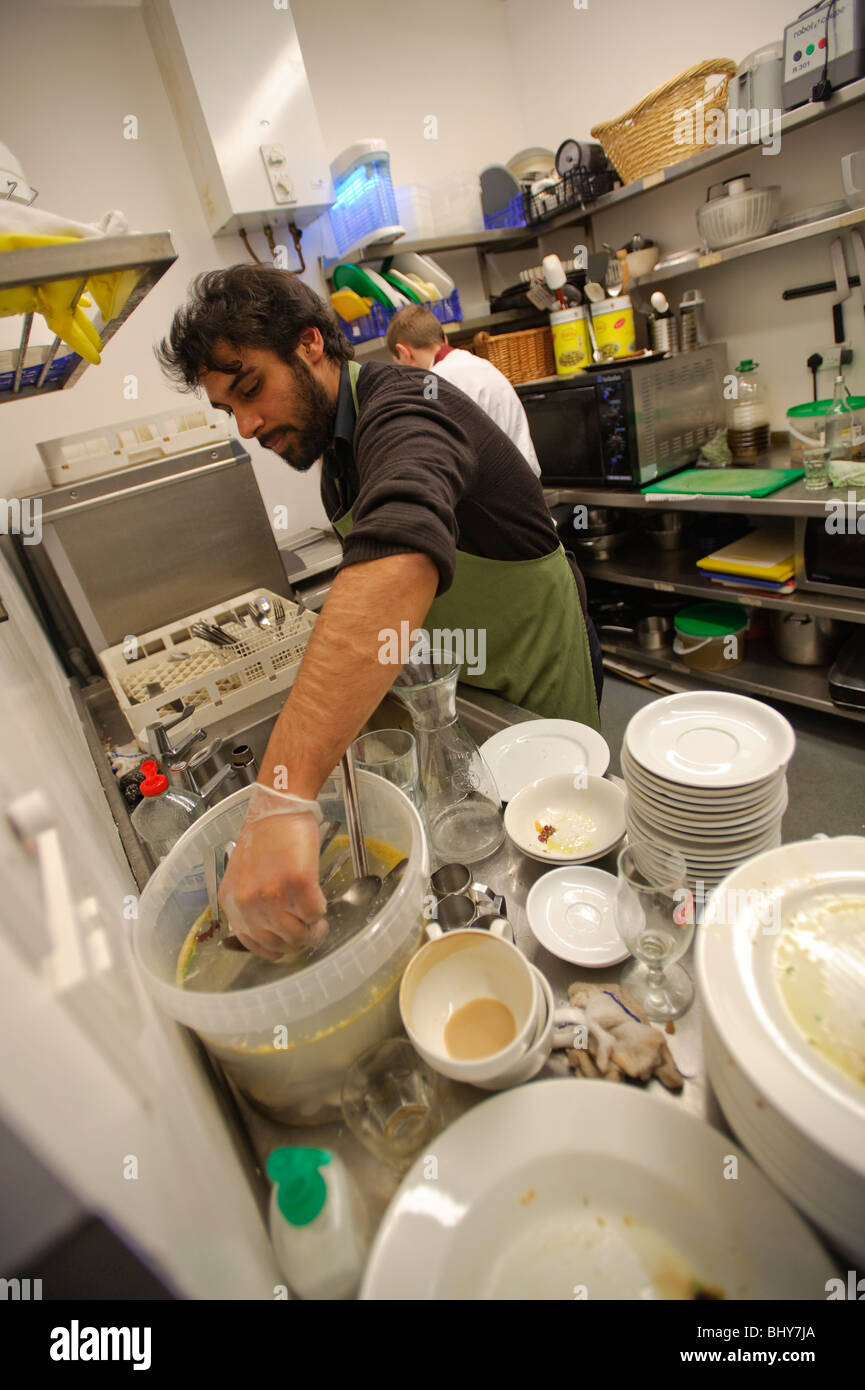 young adult male man washing up in a restaurant kitchen, UK - Stock Image