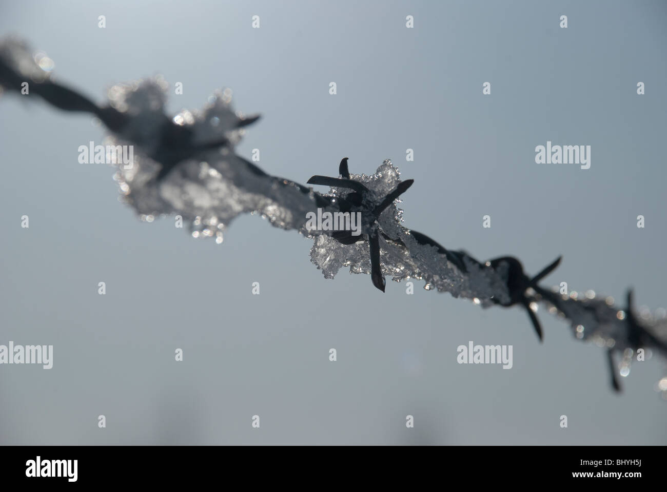 barbed wire ice snow frost water drip spike rust metal twist taut sky blue blck ouch protect safe keep out melt - Stock Image