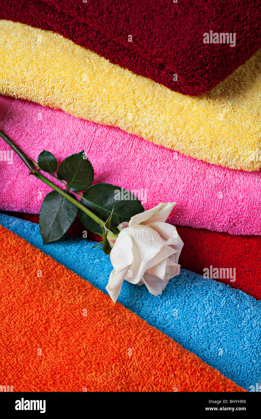 White rose and bath towels - Stock Image