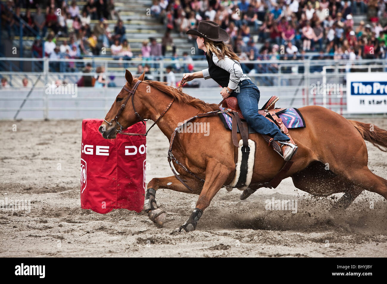 Cowgirl riding a horse during  Rodeo - Stock Image