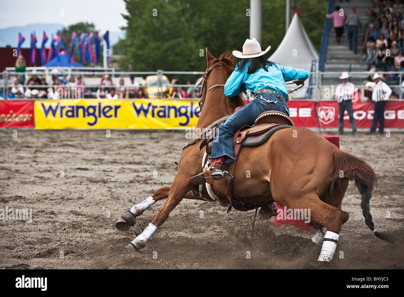 Cowgirl riding a horses during Rodeo - Stock Image