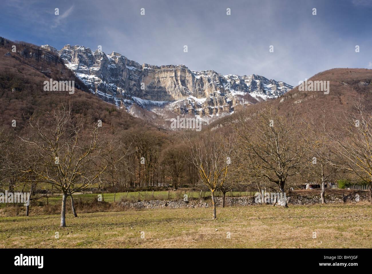 Cirque de St Meme, on the east side of the Massif de La Chartreuse mountains, regional natural Park, east France. - Stock Image