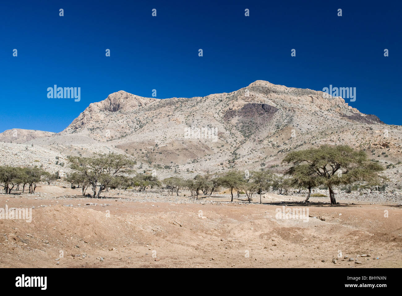 The view on the way to Nizwa in Oman. The barren rocks conjure up some interesting colours and a few plants manage - Stock Image