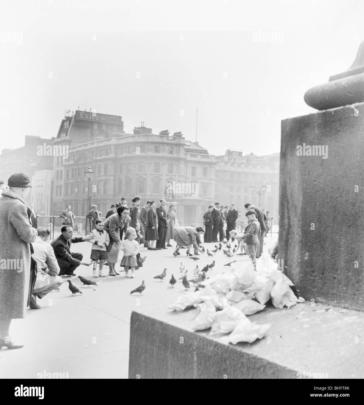 People feeding pigeons in Trafalgar Square, City of Westminster, London, c1950. Artist: Henry Grant - Stock Image