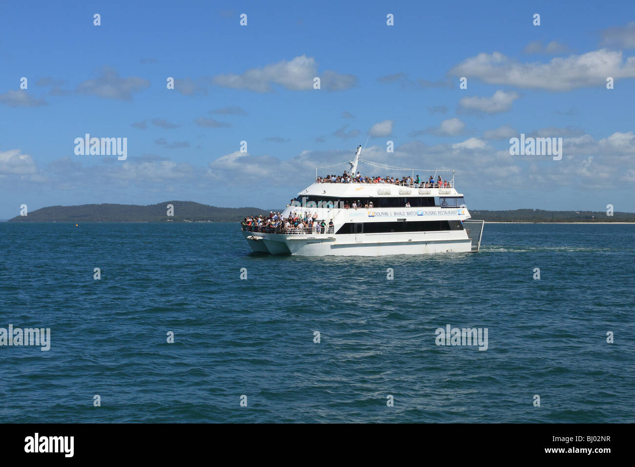 Dolphin watching boat, Port Stephens, NSW, Australia - Stock Image