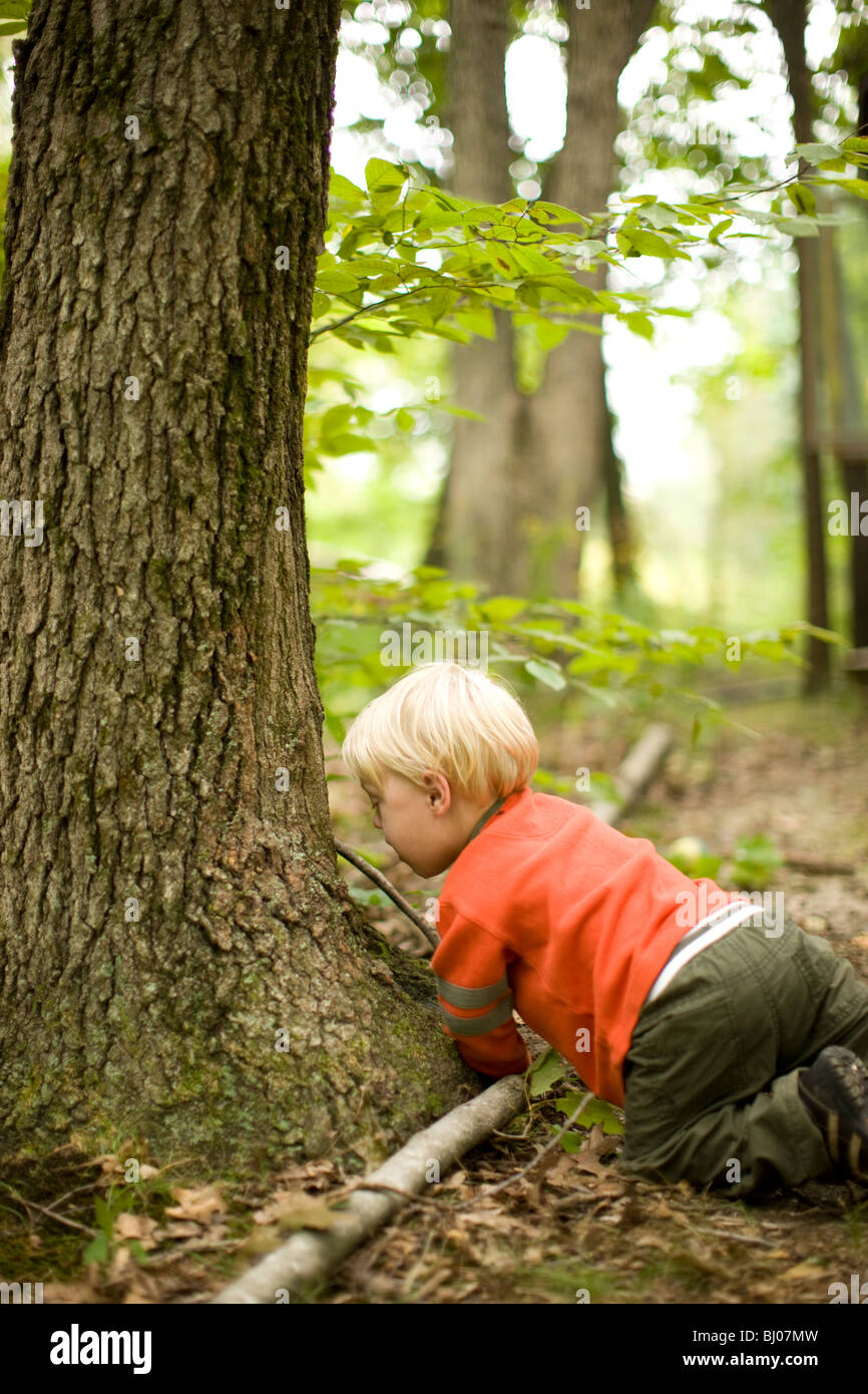 Young boy playing in the woods. - Stock Image