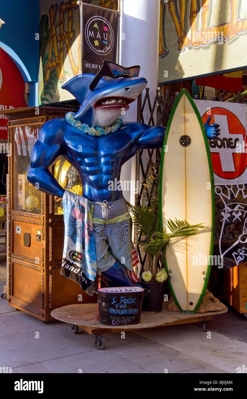 Shark Art Store Front - Stock Image
