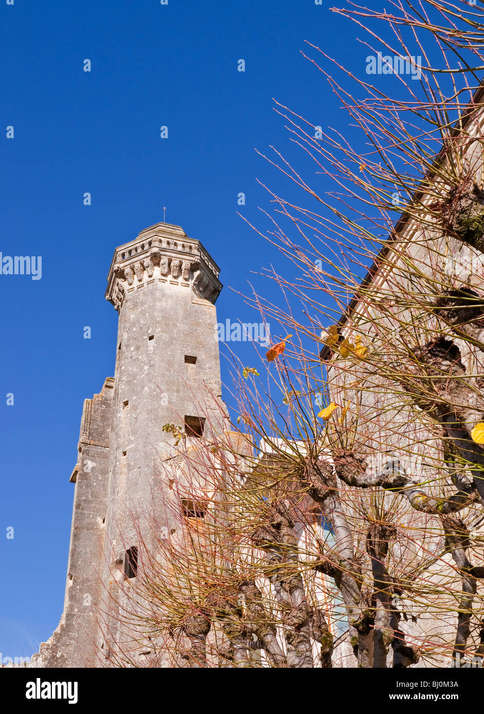16th Century Octagonal stone tower, Chateau Le Grand-Pressigny, sud-Touraine, France. - Stock Image