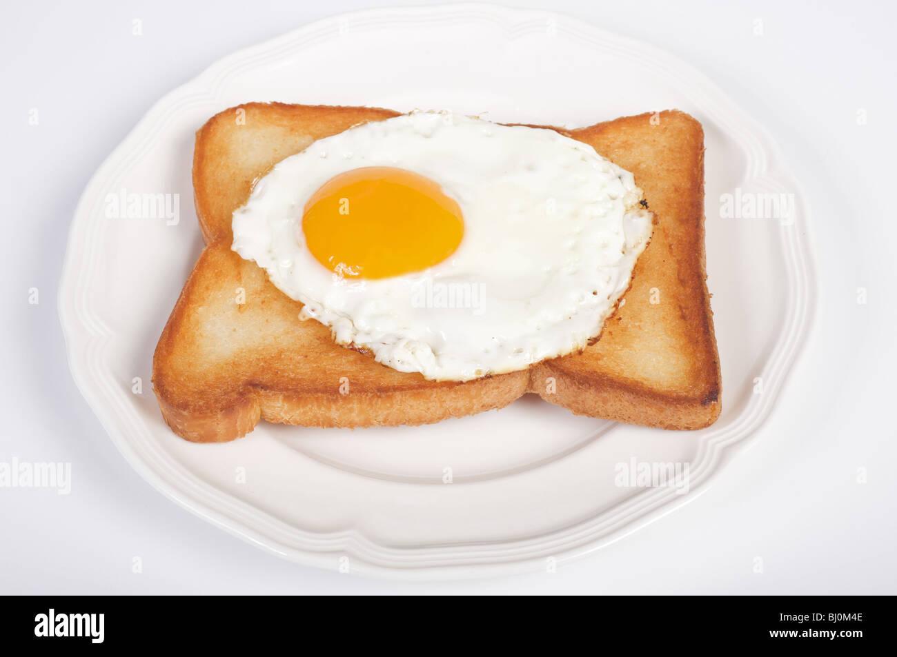 Free range fried egg - Stock Image