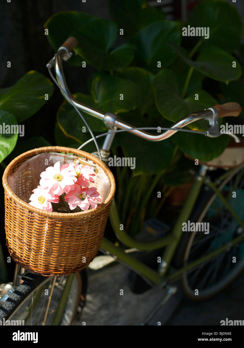 Wicker bicycle basket with fake pink flowers inside.  - Stock Image