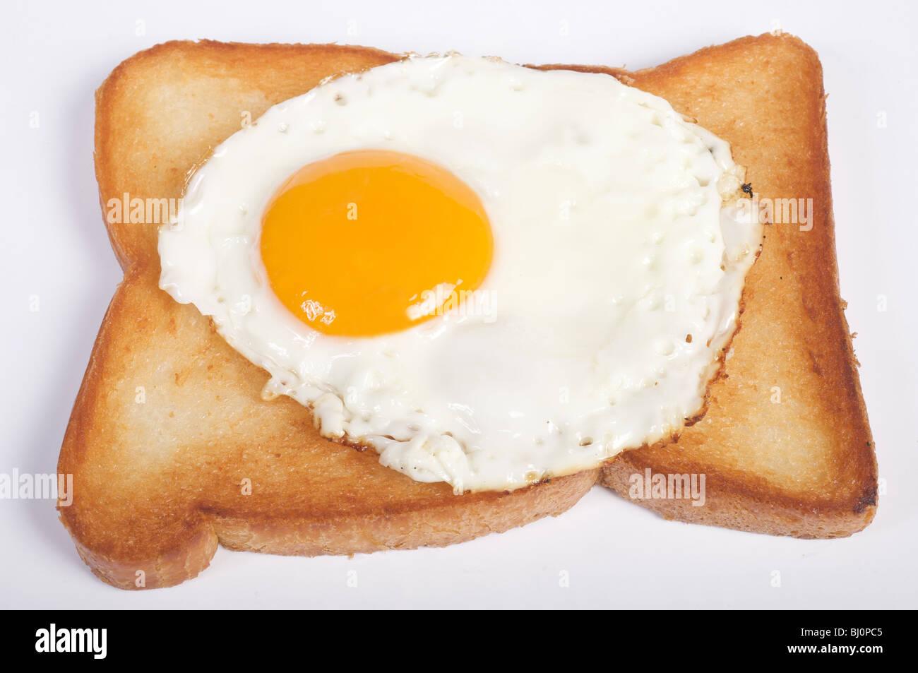Free range egg on fried bread - Stock Image