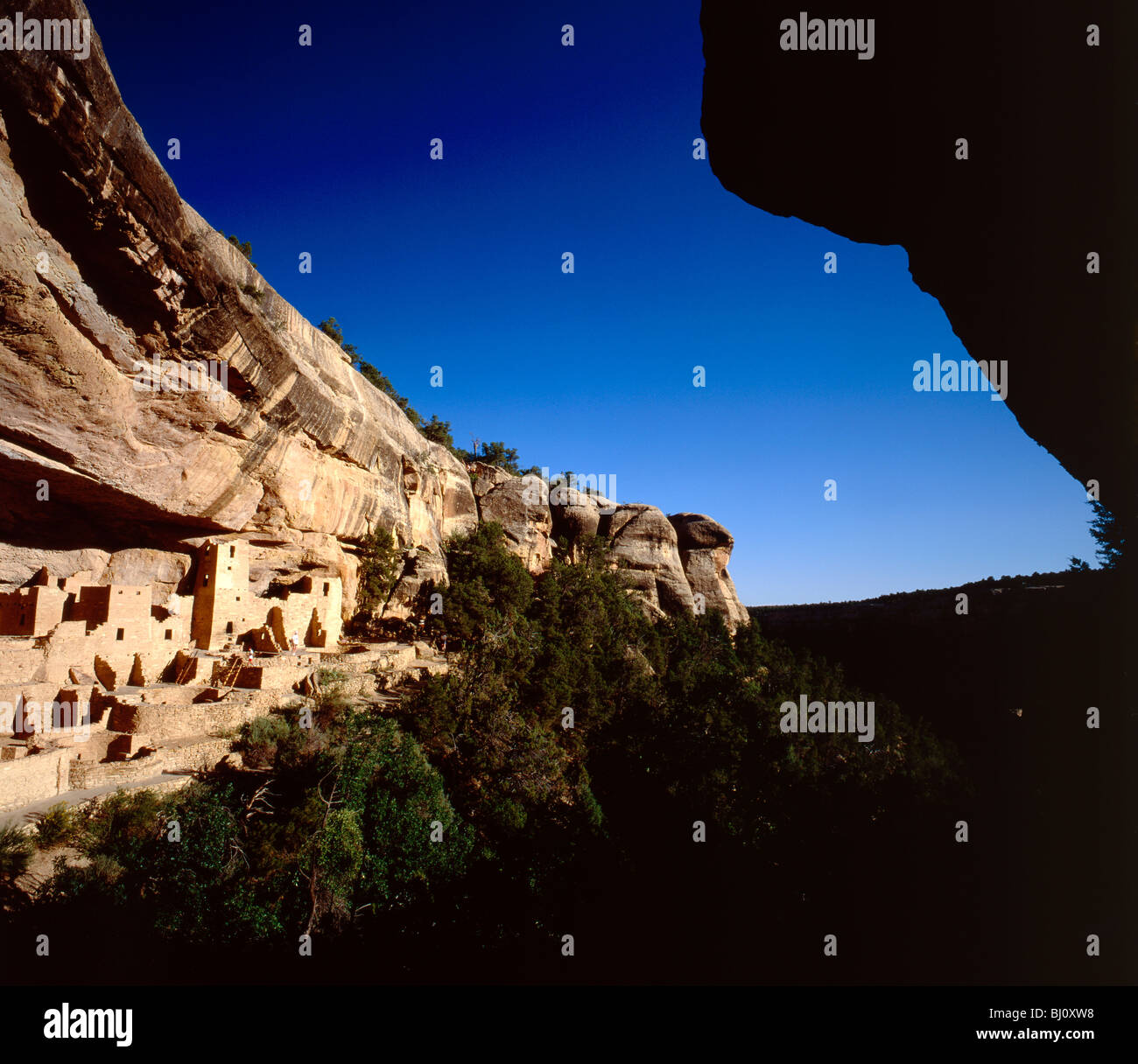 Cliff Palace, largest Anasazi cliff dwelling (c1200 AD), Mesa Verde National Park, Colorado, USA - Stock Image