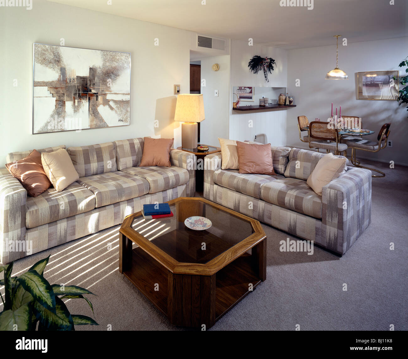 living room in an upscale home in suburban philadelphia