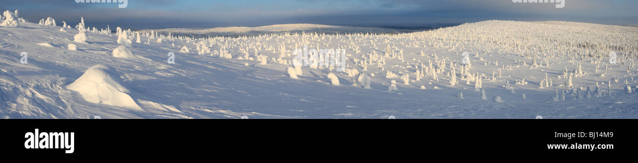 Riisitunturi National Park, Lapland, Finland - Stock Image