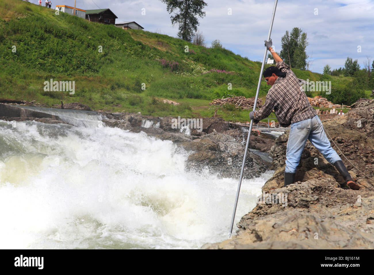 First Nations fisherman dipnetting for chinook salmon, Moricetown Falls, Bulkley river, British Columbia - Stock Image