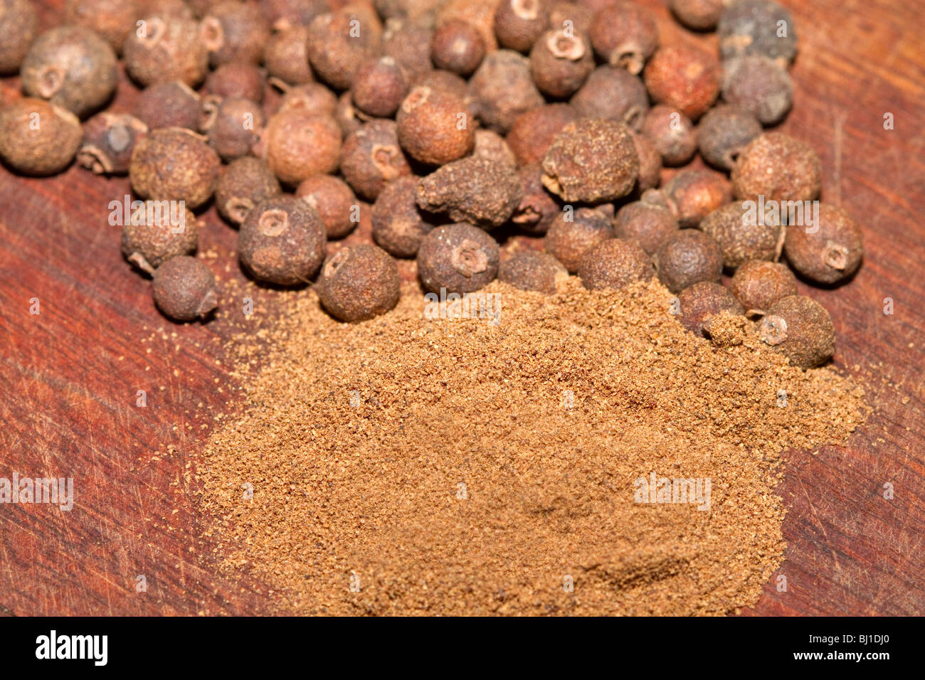 Allspice, whole dried berries and ground - Stock Image