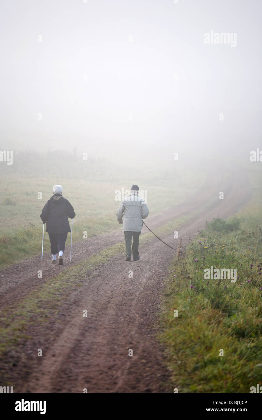 Senior citizens who walk with the dog and Nordic walking exercises - Stock Image