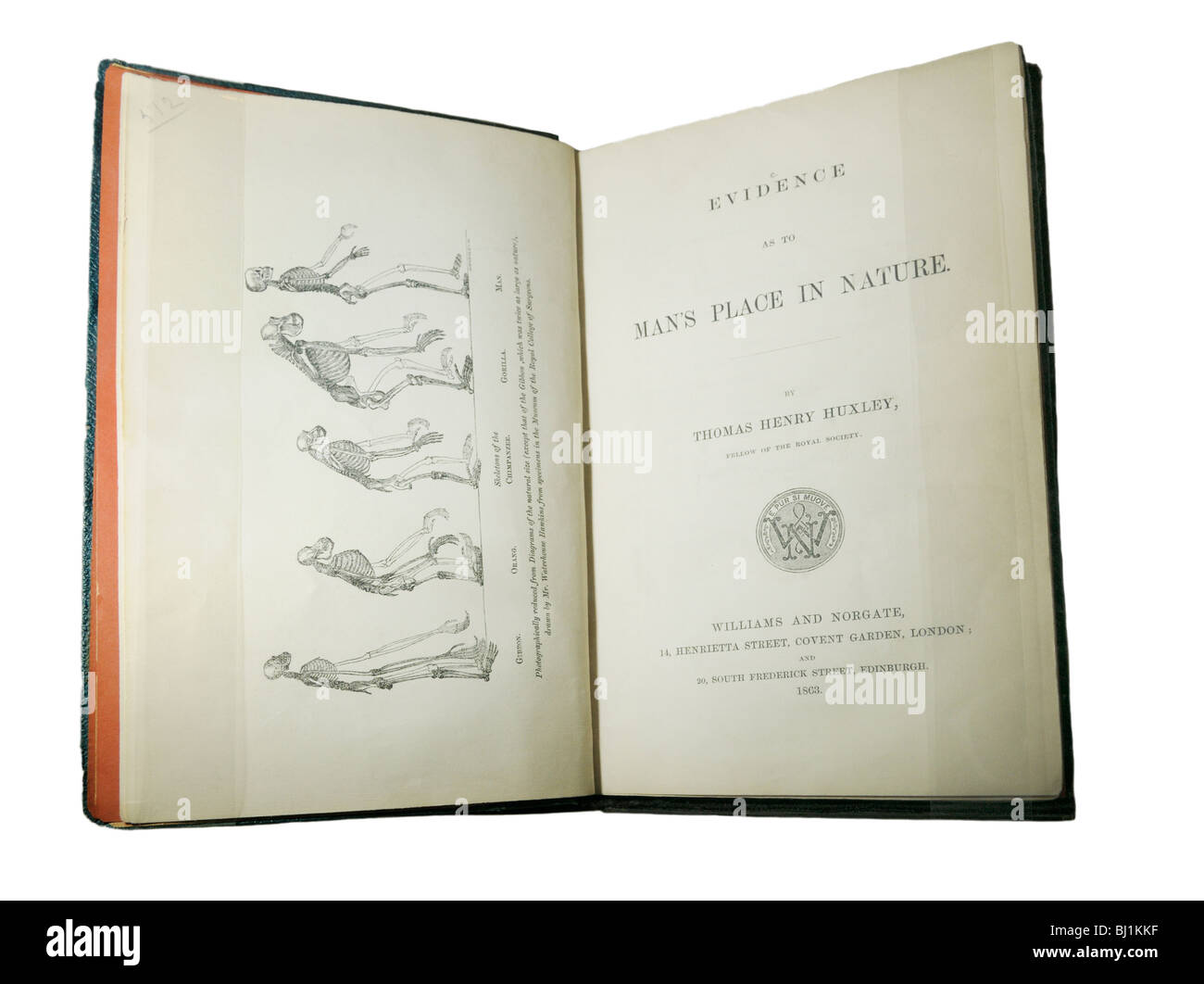 Evidence as to Man's Place in Nature, a book on evolutionary theory by T.H. Huxley from 1863 - Stock Image