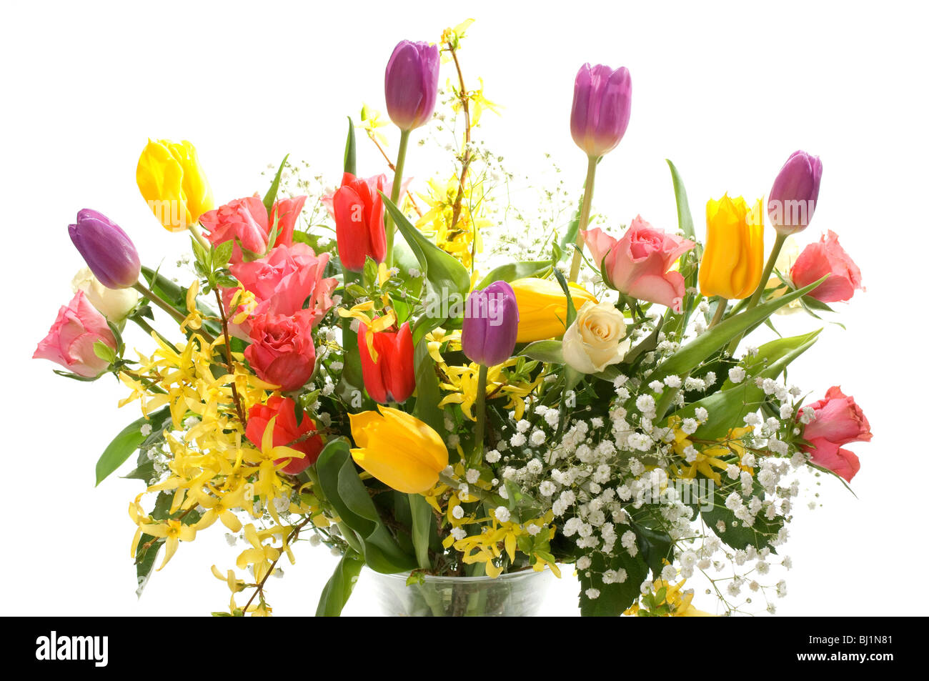 Beautiful Purple Tulip Flowers Bouquet Stock Photos Beautiful