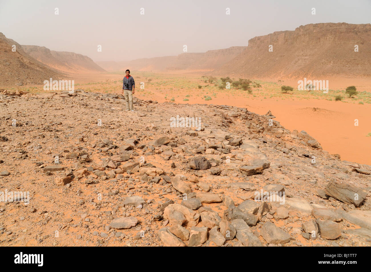 A view of the Wadi Hamra area of the Gilf Kebir, in Egypt's Western (Libyan) Desert region. - Stock Image