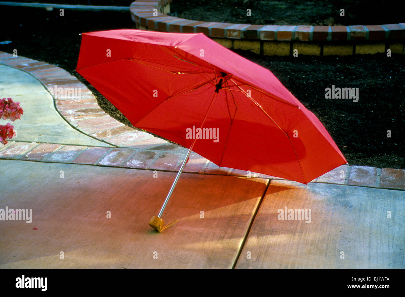 Open Red Umbrella Rain Water Protection Color Spread Cover Dry Sun Sidewalk  Walk Garden Wet Fabric Handle Shaft Rod Fold Collaps