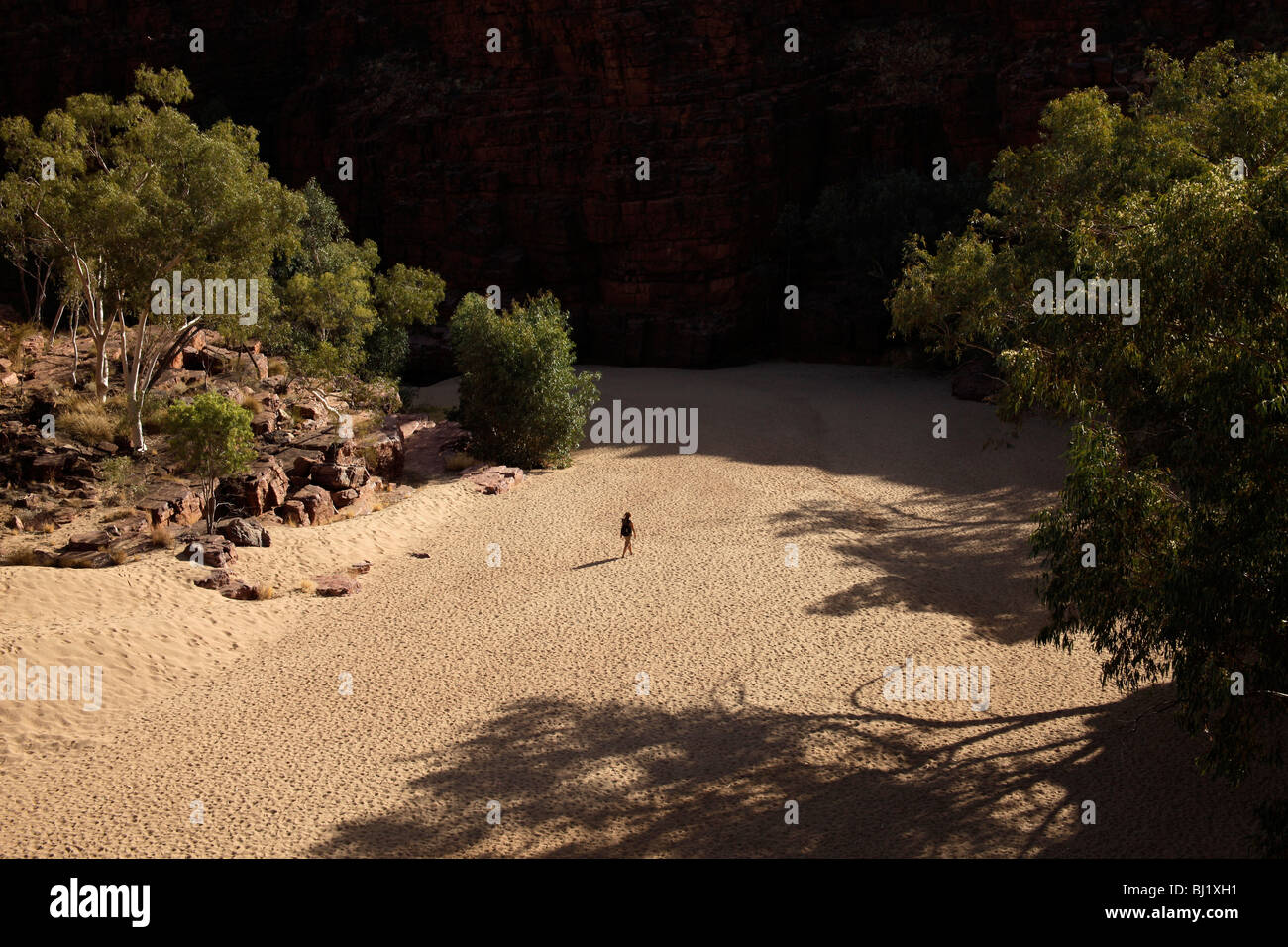 single tourist walking through Trephina Gorge Nature Park in the East MacDonnell Ranges, Northern Territory, Australia - Stock Image