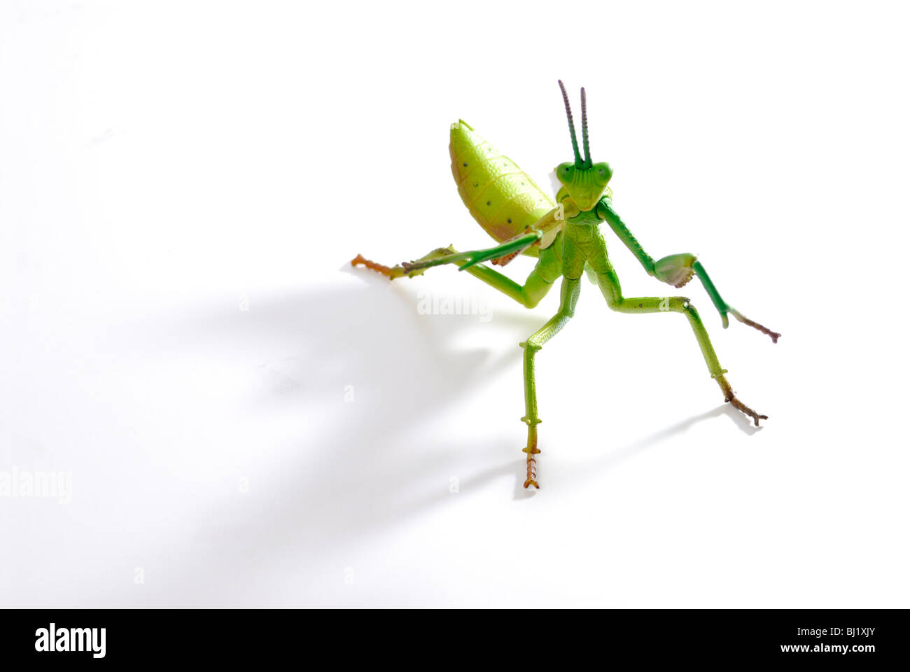 Toy locust, hedge funds - Stock Image