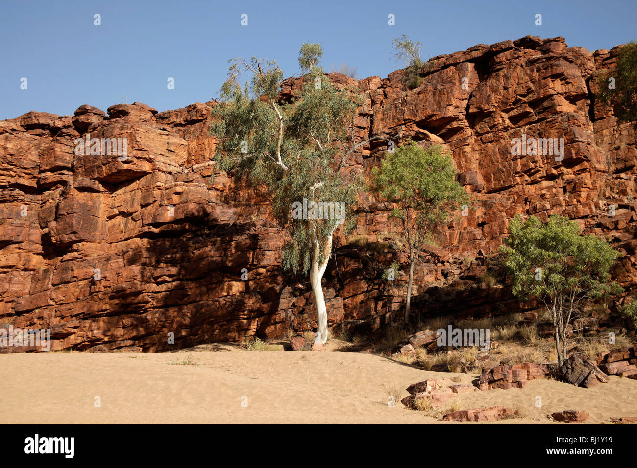 Trephina Gorge Nature Park in the East MacDonnell Ranges, Northern Territory, Australia - Stock Image