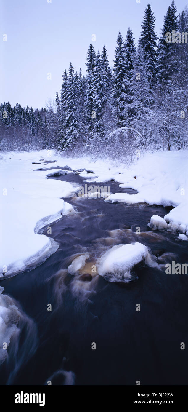 A small river in vinter - Stock Image