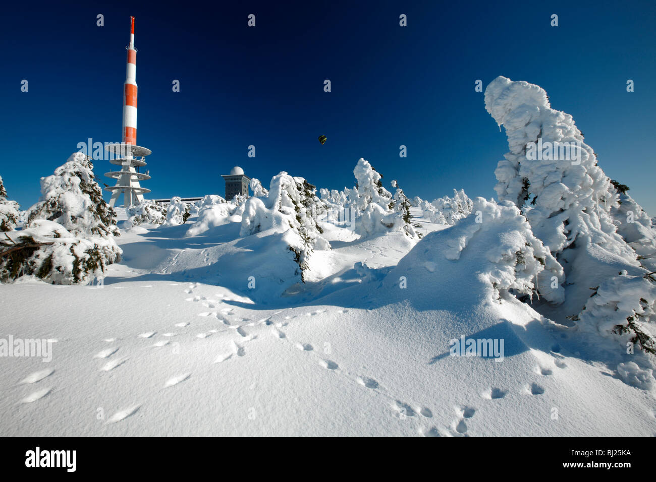 Transmission Mast, and snow covered fir trees in winter, Brocken mountain, Hochharz National Park, Sachsen_Anhalt, - Stock Image