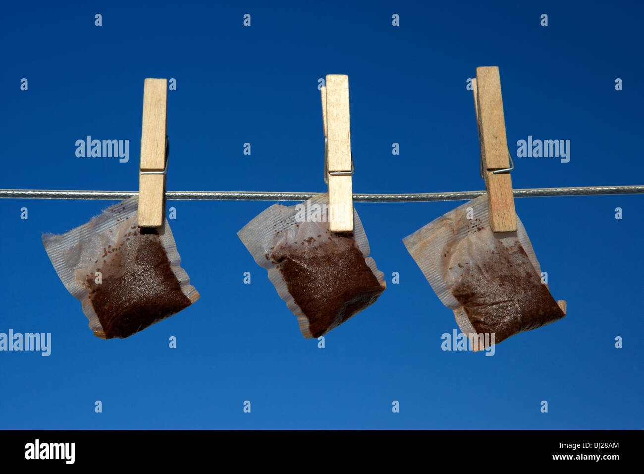 three wet teabags hanging on a washing line with blue sky - Stock Image