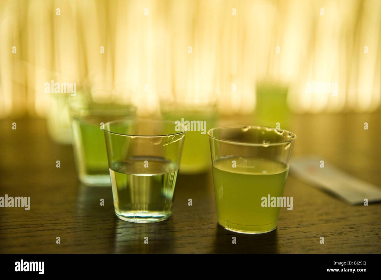 Absinthe tasting samples - Stock Image