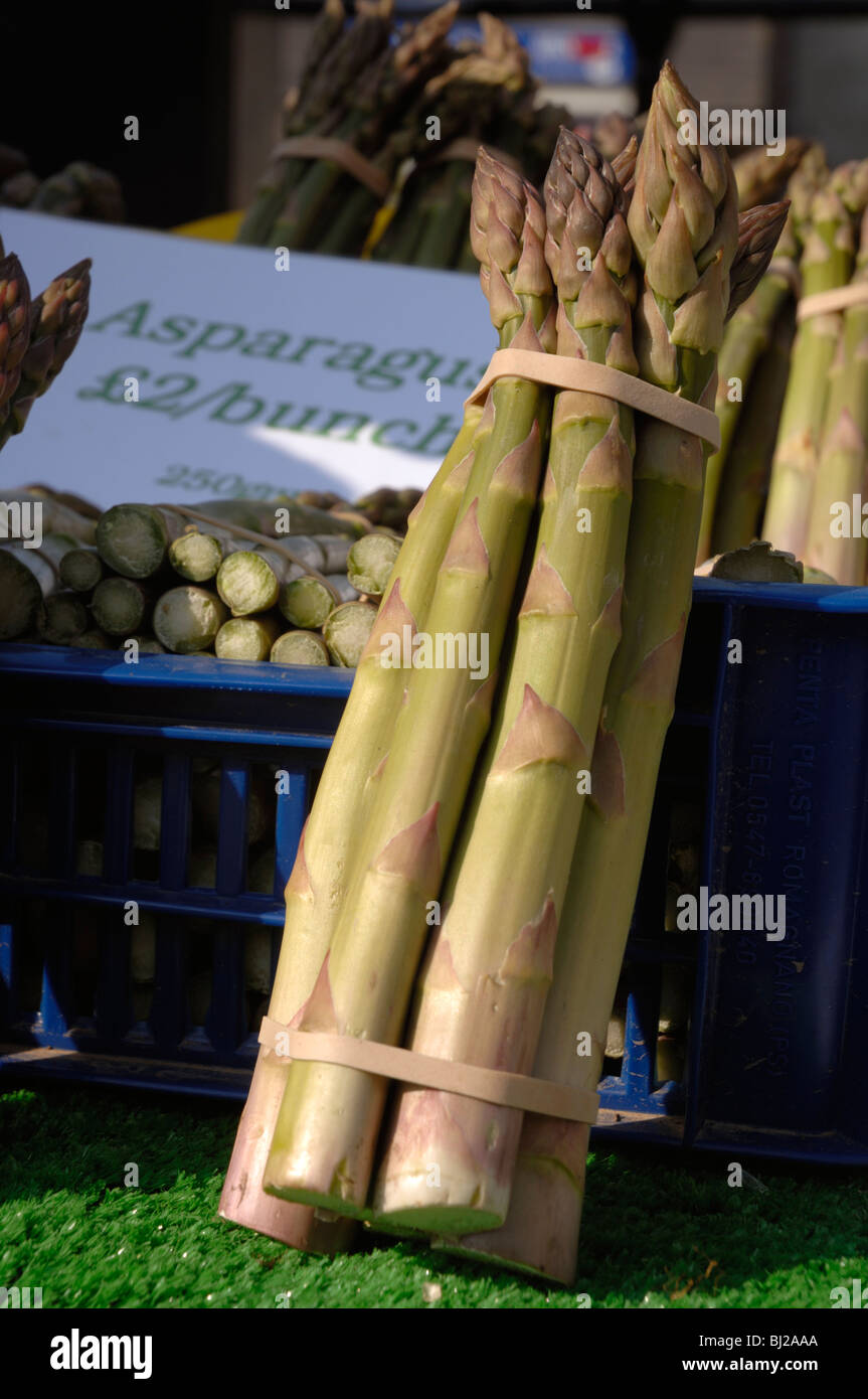 Organic asparagus, local produce for sale at farmer's market, Haverfordwest, Pembrokeshire, Wales, UK, Europe - Stock Image