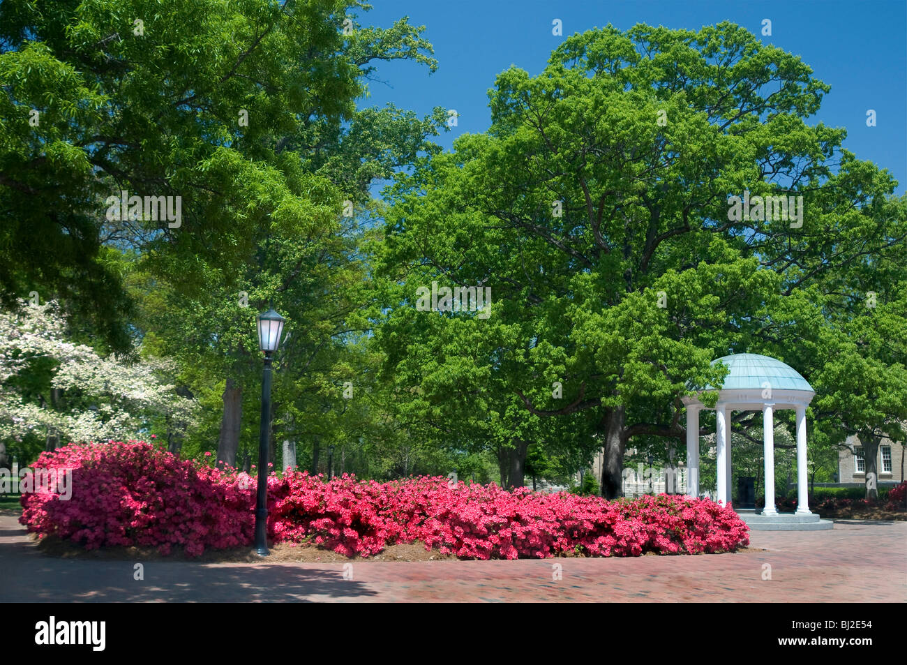 The Old Well, University of North Carolina, Chapel Hill - Stock Image