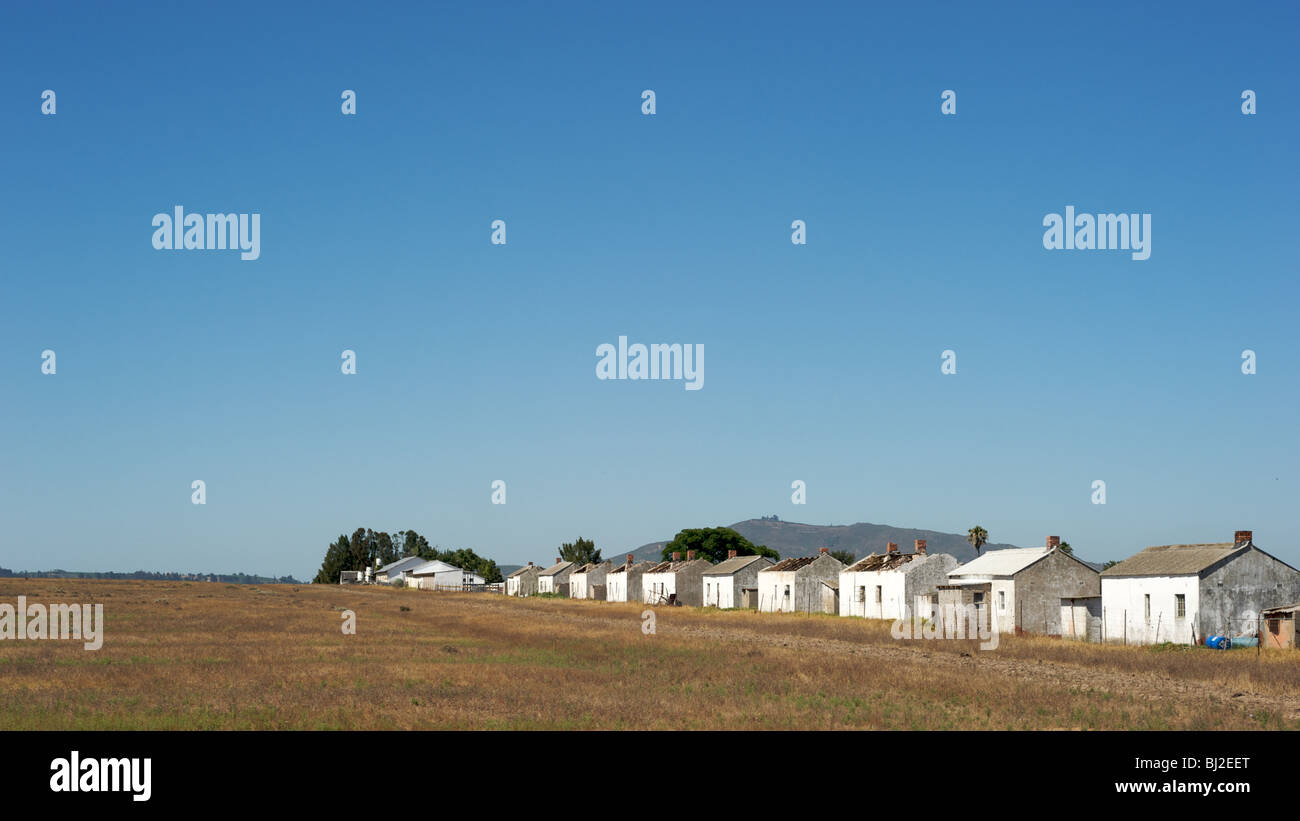 Typical farmhouses in South Africa - Stock Image