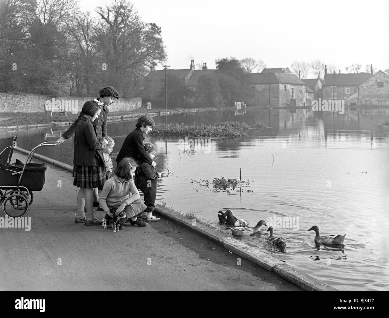 Village duck pond scene, Tickhill, Doncaster, South Yorkshire, 1961. Artist: Michael Walters - Stock Image