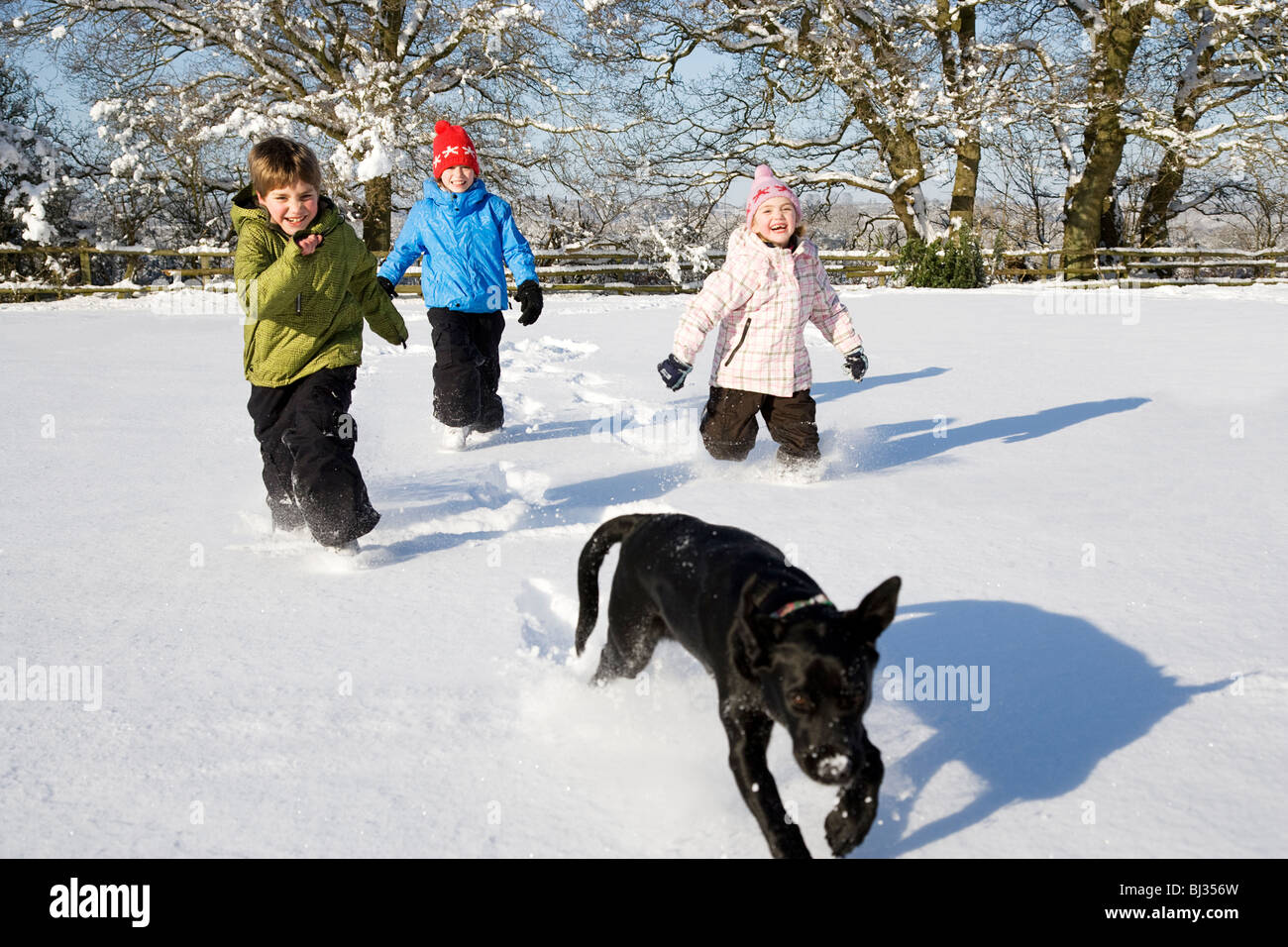 Children and dog running in the snow - Stock Image