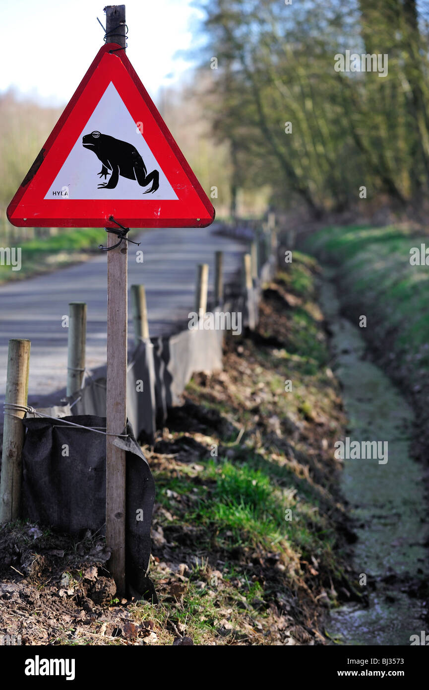 Warning sign for migrating amphibians / toads crossing the road during annual migration in the spring, Belgium - Stock Image