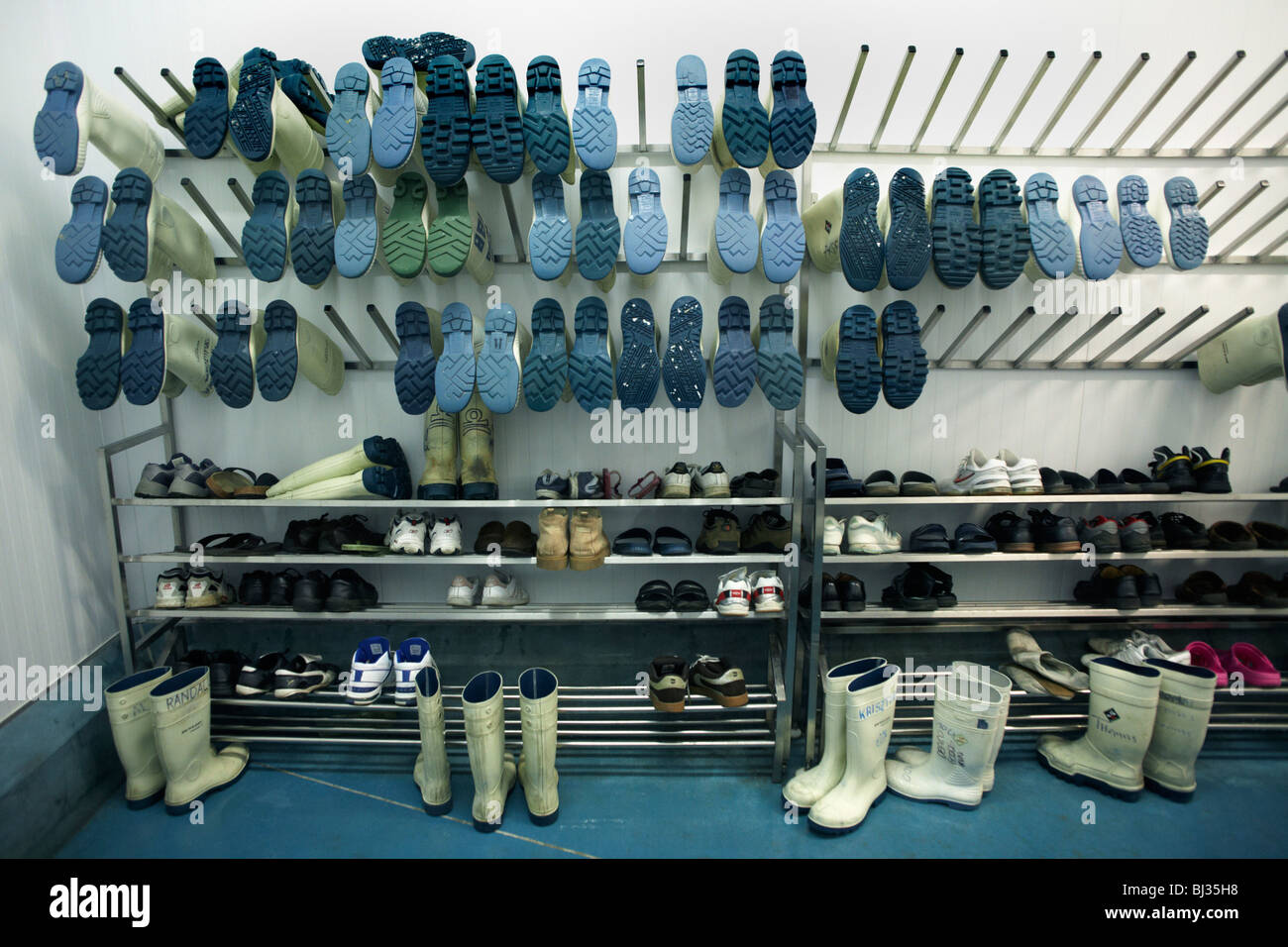 Many pairs of anti-slip Acifort Wellington boots are awaiting users at the New England seafood suppliers in Chessington, Stock Photo